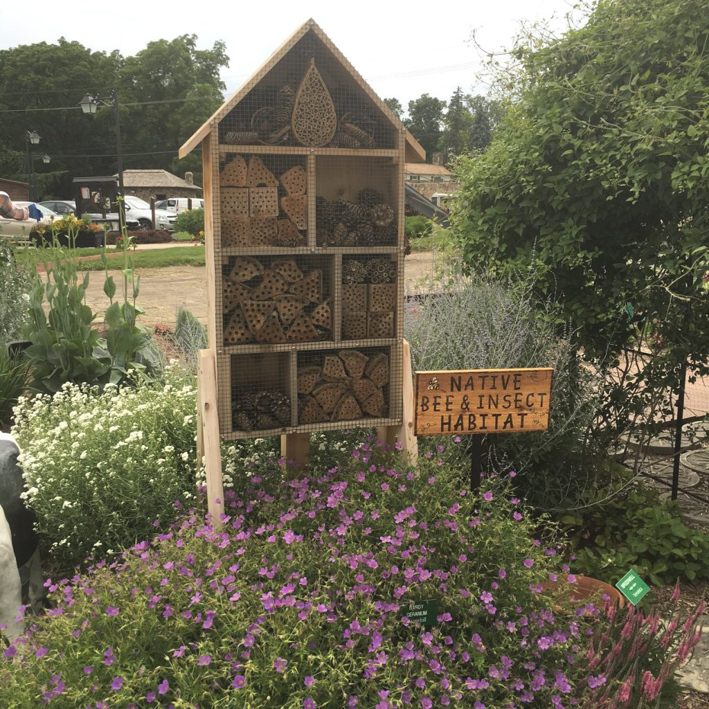 Bee and Insect Habitat